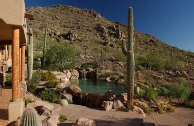 Swimming pool surrounded by trees and dirt, desert like backyard.