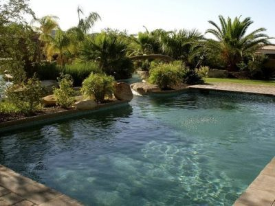 Close up view of the water in a private swimming pool. Backyard is private due to trees all around.